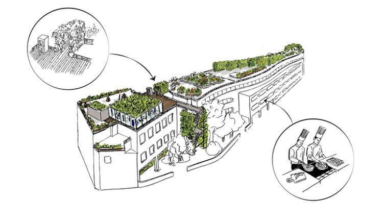 Projet Arche végétale